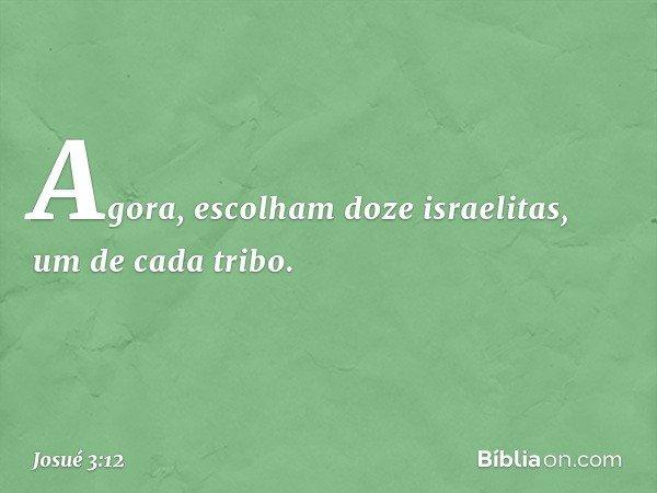 Agora, escolham doze israelitas, um de cada tribo. -- Josué 3:12