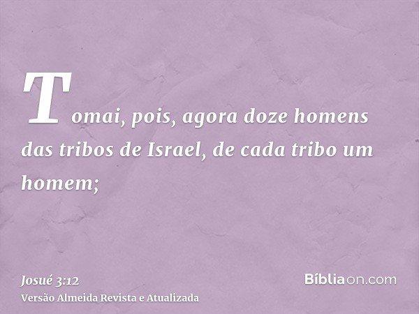 Tomai, pois, agora doze homens das tribos de Israel, de cada tribo um homem;
