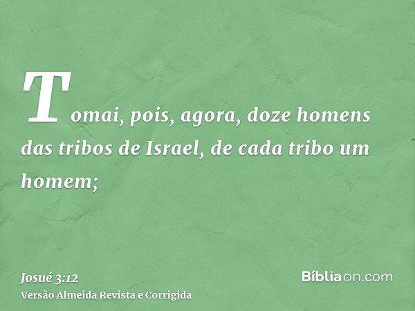Tomai, pois, agora, doze homens das tribos de Israel, de cada tribo um homem;