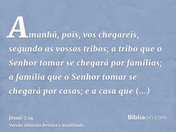 Amanhã, pois, vos chegareis, segundo as vossas tribos; a tribo que o Senhor tomar se chegará por famílias; a família que o Senhor tomar se chegará por casas; e