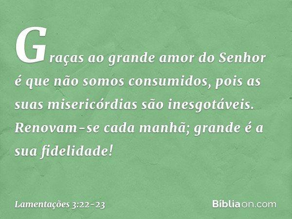 Graças ao grande amor do Senhor é que não somos consumidos, pois as suas misericórdias são inesgotáveis. Renovam-se cada manhã; grande é a sua fidelidade! -- La