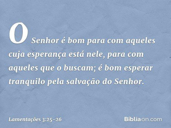 O Senhor é bom para com aqueles cuja esperança está nele, para com aqueles que o buscam; é bom esperar tranquilo pela salvação do Senhor. -- Lamentações 3:25-26
