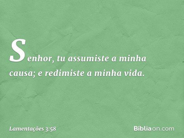 Senhor, tu assumiste a minha causa; e redimiste a minha vida. -- Lamentações 3:58