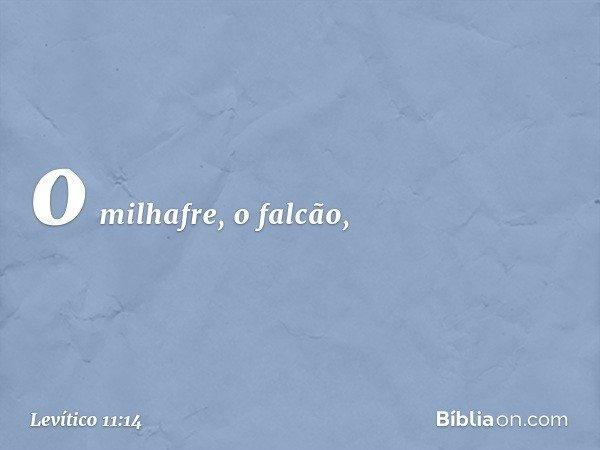 o milhafre, o falcão, -- Levítico 11:14