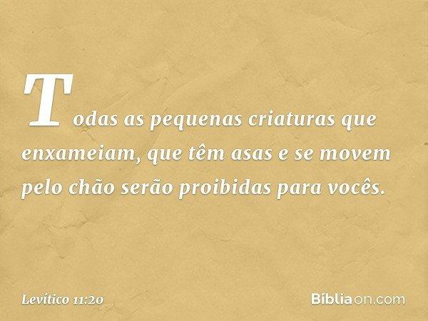 """""""Todas as pequenas criaturas que enxameiam, que têm asas e se movem pelo chão serão proibidas para vocês. -- Levítico 11:20"""