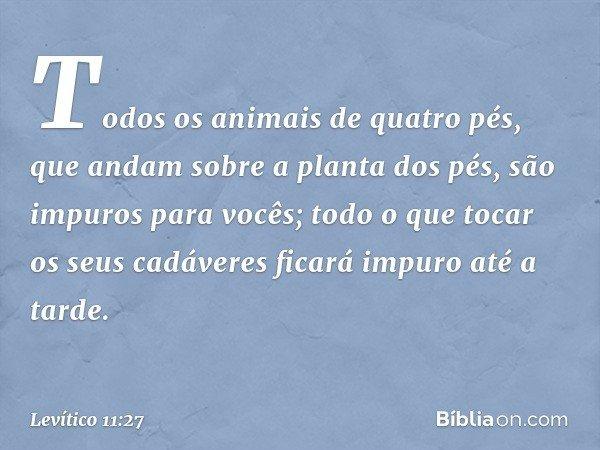 Todos os animais de quatro pés, que andam sobre a planta dos pés, são impuros para vocês; todo o que tocar os seus cadáveres ficará impuro até a tarde. -- Levít