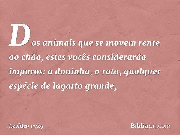 """""""Dos animais que se movem rente ao chão, estes vocês considerarão impuros: a doninha, o rato, qualquer espécie de lagarto grande, -- Levítico 11:29"""