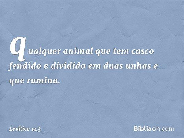 qualquer animal que tem casco fendido e dividido em duas unhas e que rumina. -- Levítico 11:3