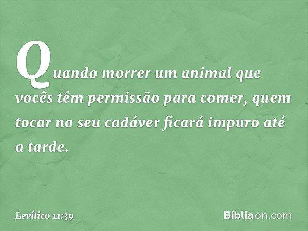 """""""Quando morrer um animal que vocês têm permissão para comer, quem tocar no seu cadáver ficará impuro até a tarde. -- Levítico 11:39"""