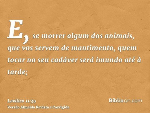 E, se morrer algum dos animais, que vos servem de mantimento, quem tocar no seu cadáver será imundo até à tarde;