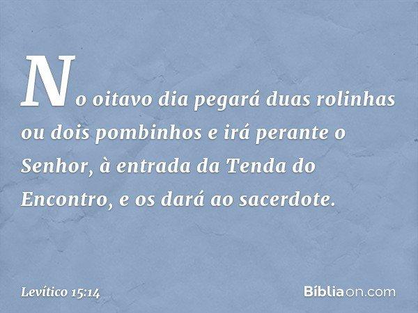 No oitavo dia pegará duas rolinhas ou dois pombinhos e irá perante o Senhor, à entrada da Tenda do Encontro, e os dará ao sacerdote. -- Levítico 15:14
