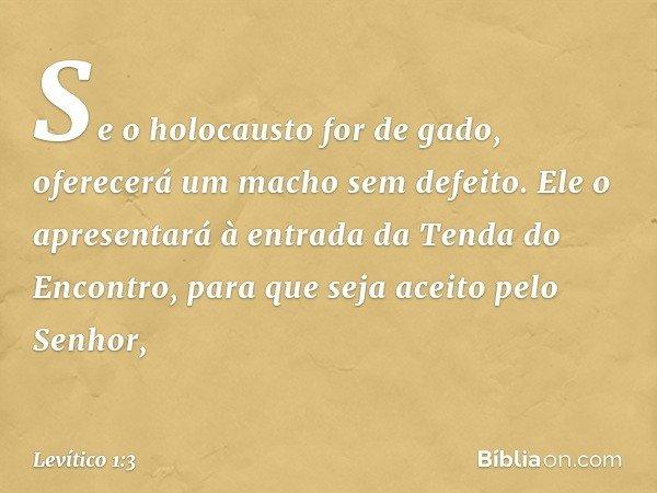 """""""Se o holocausto for de gado, oferecerá um macho sem defeito. Ele o apresentará à entrada da Tenda do Encontro, para que seja aceito pelo Senhor, -- Levítico 1:"""
