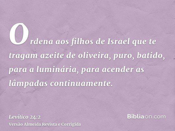 Ordena aos filhos de Israel que te tragam azeite de oliveira, puro, batido, para a luminária, para acender as lâmpadas continuamente.