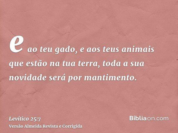 e ao teu gado, e aos teus animais que estão na tua terra, toda a sua novidade será por mantimento.