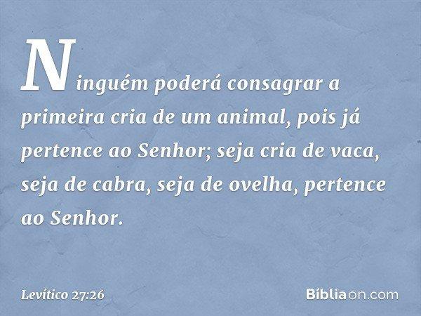 """""""Ninguém poderá consagrar a primeira cria de um animal, pois já pertence ao Senhor; seja cria de vaca, seja de cabra, seja de ovelha, pertence ao Senhor. -- Lev"""