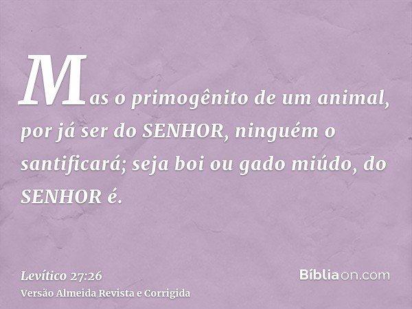 Mas o primogênito de um animal, por já ser do SENHOR, ninguém o santificará; seja boi ou gado miúdo, do SENHOR é.