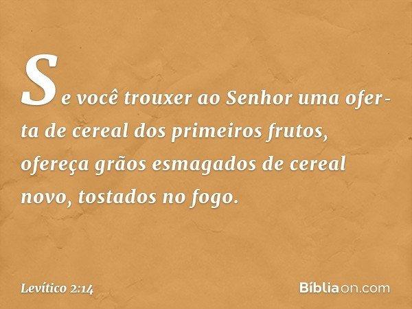 """""""Se você trouxer ao Senhor uma oferta de cereal dos primeiros frutos, ofereça grãos esmagados de cereal novo, tostados no fogo. -- Levítico 2:14"""