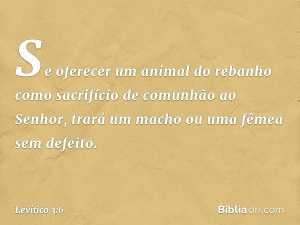 """""""Se oferecer um animal do rebanho como sacrifício de comunhão ao Senhor, trará um macho ou uma fêmea sem defeito. -- Levítico 3:6"""