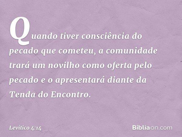 Quando tiver consciência do pecado que cometeu, a comunidade trará um novilho como oferta pelo pecado e o apresentará diante da Tenda do Encontro. -- Levítico 4:14