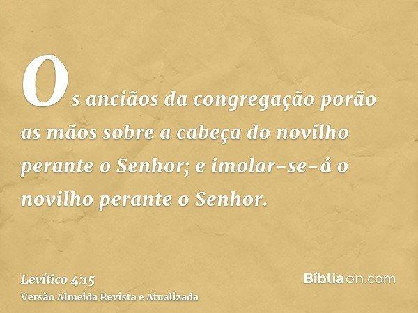 Os anciãos da congregação porão as mãos sobre a cabeça do novilho perante o Senhor; e imolar-se-á o novilho perante o Senhor.