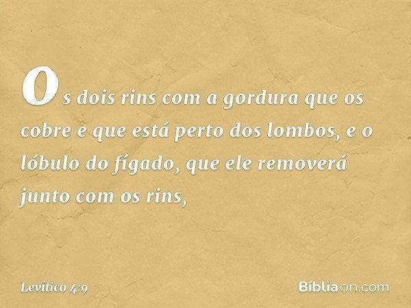 os dois rins com a gordura que os cobre e que está perto dos lombos, e o lóbulo do fígado, que ele removerá junto com os rins, -- Levítico 4:9