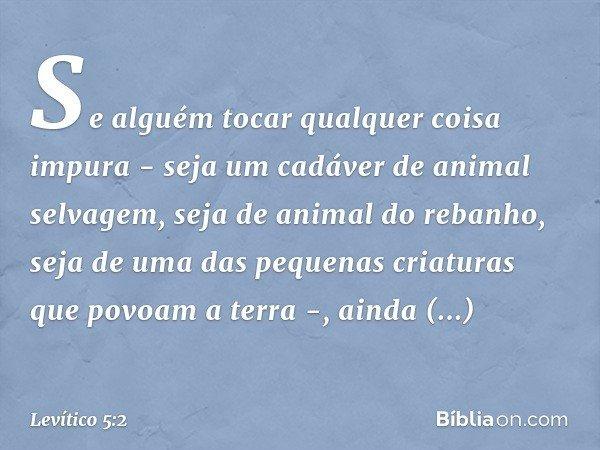 """""""Se alguém tocar qualquer coisa impura - seja um cadáver de animal selvagem, seja de animal do rebanho, seja de uma das pequenas criaturas que povoam a terra -"""