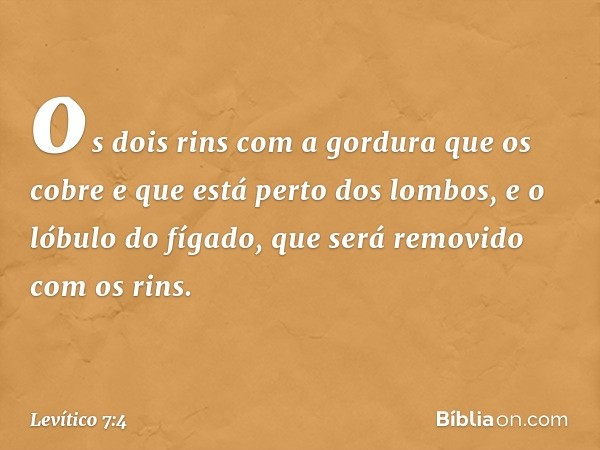 os dois rins com a gordura que os cobre e que está perto dos lombos, e o lóbulo do fígado, que será removido com os rins. -- Levítico 7:4