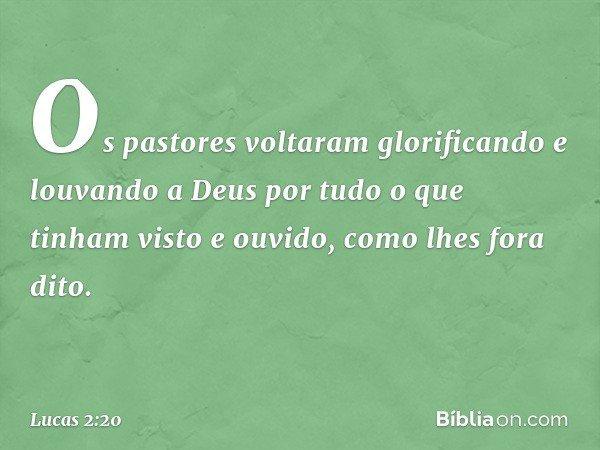 Os pastores voltaram glorificando e louvando a Deus por tudo o que tinham visto e ouvido, como lhes fora dito. -- Lucas 2:20