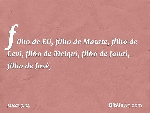 filho de Eli, filho de Matate, filho de Levi, filho de Melqui, filho de Janai, filho de José, -- Lucas 3:24