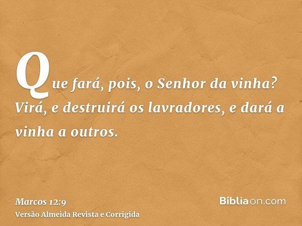 Que fará, pois, o Senhor da vinha? Virá, e destruirá os lavradores, e dará a vinha a outros.