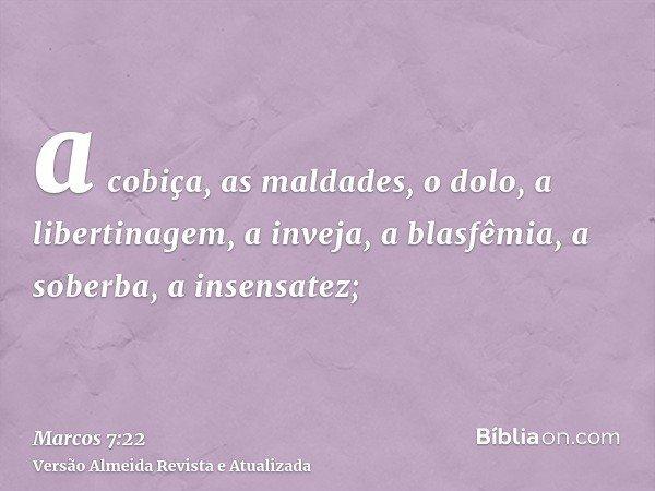 a cobiça, as maldades, o dolo, a libertinagem, a inveja, a blasfêmia, a soberba, a insensatez;