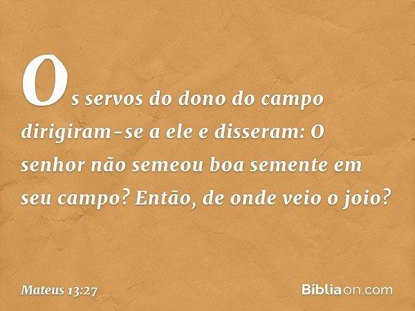 """""""Os servos do dono do campo dirigiram-se a ele e disseram: 'O senhor não semeou boa semente em seu campo? Então, de onde veio o joio?' -- Mateus 13:27"""