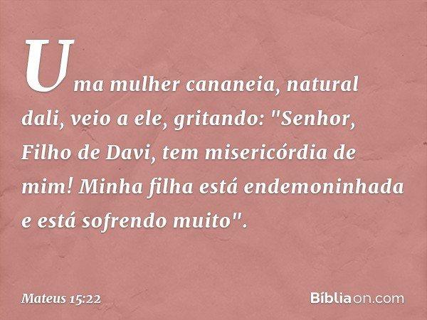 """Uma mulher cananeia, natural dali, veio a ele, gritando: """"Senhor, Filho de Davi, tem misericórdia de mim! Minha filha está endemoninhada e está sofrendo muito""""."""