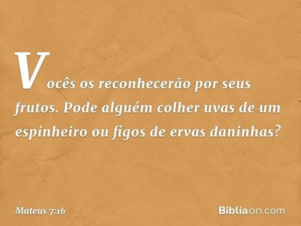 Vocês os reconhecerão por seus frutos. Pode alguém colher uvas de um espinheiro ou figos de ervas daninhas? -- Mateus 7:16