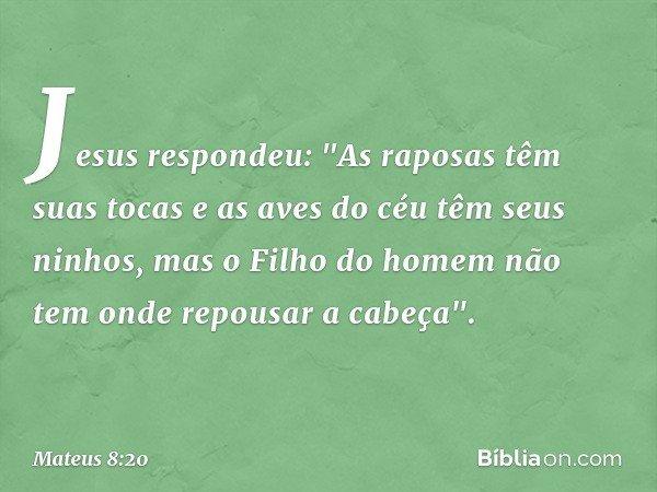 """Jesus respondeu: """"As raposas têm suas tocas e as aves do céu têm seus ninhos, mas o Filho do homem não tem onde repousar a cabeça"""". -- Mateus 8:20"""