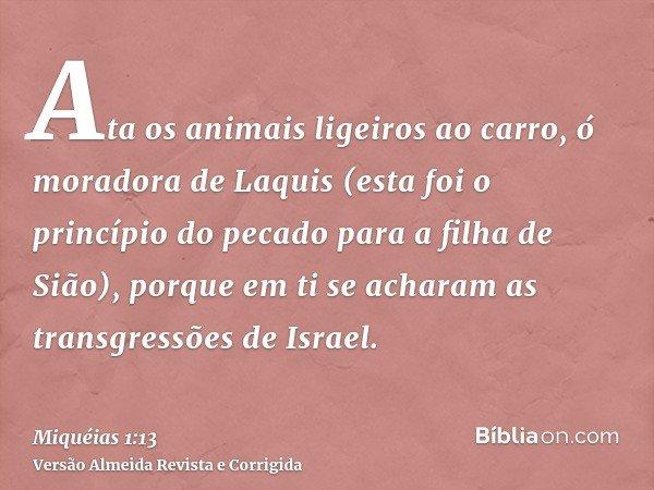 Ata os animais ligeiros ao carro, ó moradora de Laquis (esta foi o princípio do pecado para a filha de Sião), porque em ti se acharam as transgressões de Israel