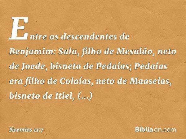 Entre os descendentes de Benjamim: Salu, filho de Mesulão, neto de Joede, bisneto de Pedaías; Pedaías era filho de Colaías, neto de Maaseias, bisneto de Itiel,