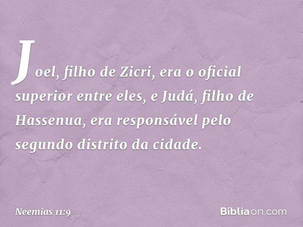 Joel, filho de Zicri, era o oficial superior entre eles, e Judá, filho de Hassenua, era responsável pelo segundo distrito da cidade. -- Neemias 11:9