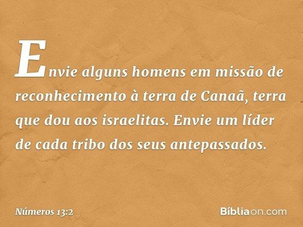 """""""Envie alguns homens em missão de reconhecimento à terra de Canaã, terra que dou aos israelitas. Envie um líder de cada tribo dos seus antepassados"""". -- Números"""