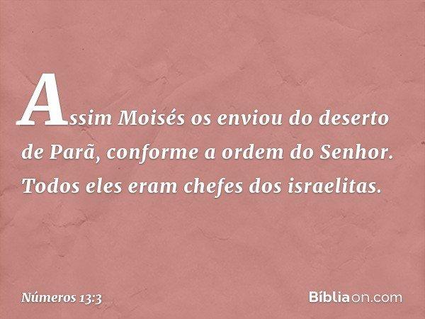 Assim Moisés os enviou do deserto de Parã, conforme a ordem do Senhor. Todos eles eram chefes dos israelitas. -- Números 13:3