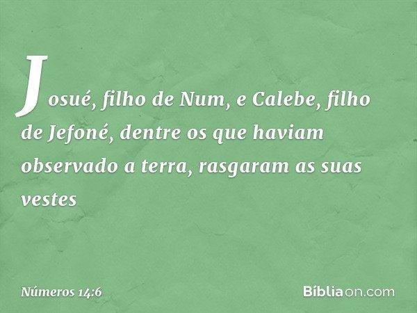 Josué, filho de Num, e Calebe, filho de Jefoné, dentre os que haviam observado a terra, rasgaram as suas vestes -- Números 14:6