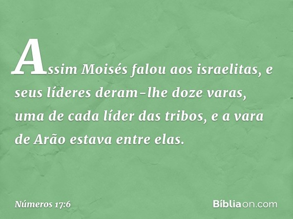 Assim Moisés falou aos israelitas, e seus líderes deram-lhe doze varas, uma de cada líder das tribos, e a vara de Arão estava entre elas. -- Números 17:6