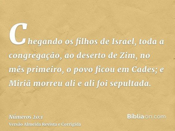 Chegando os filhos de Israel, toda a congregação, ao deserto de Zim, no mês primeiro, o povo ficou em Cades; e Miriã morreu ali e ali foi sepultada.