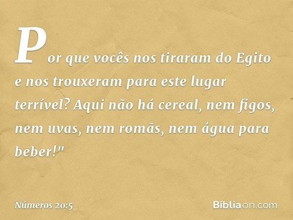 Por que vocês nos tiraram do Egito e nos trouxeram para este lugar terrível? Aqui não há cereal, nem figos, nem uvas, nem romãs, nem água para beber!
