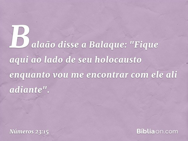 """Balaão disse a Balaque: """"Fique aqui ao lado de seu holocausto enquanto vou me encontrar com ele ali adiante"""". -- Números 23:15"""
