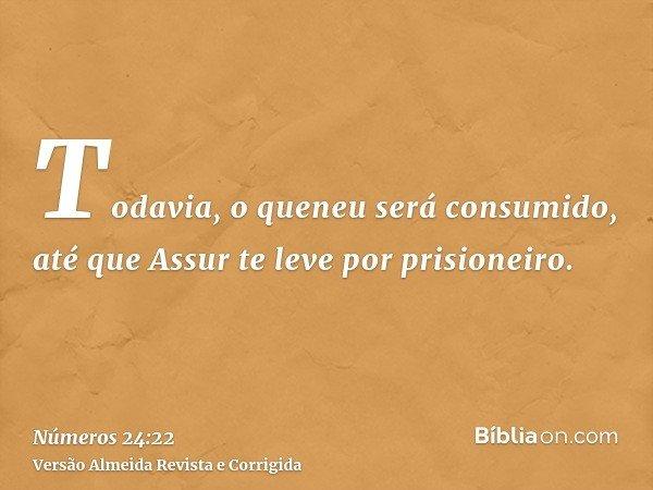 Todavia, o queneu será consumido, até que Assur te leve por prisioneiro.