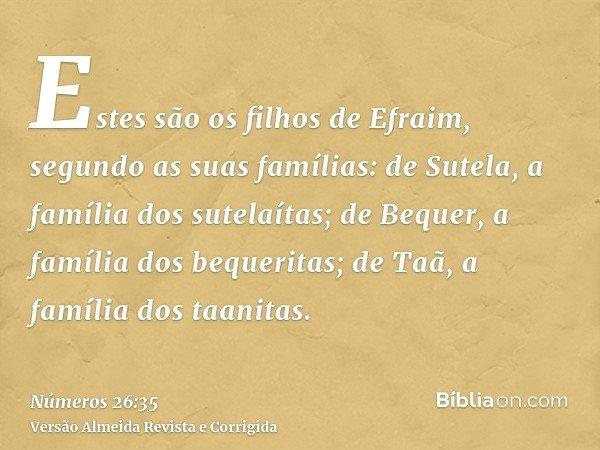 Estes são os filhos de Efraim, segundo as suas famílias: de Sutela, a família dos sutelaítas; de Bequer, a família dos bequeritas; de Taã, a família dos taanita