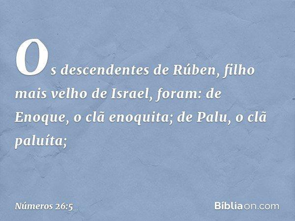 Os descendentes de Rúben, filho mais velho de Israel, foram: de Enoque, o clã enoquita; de Palu, o clã paluíta; -- Números 26:5