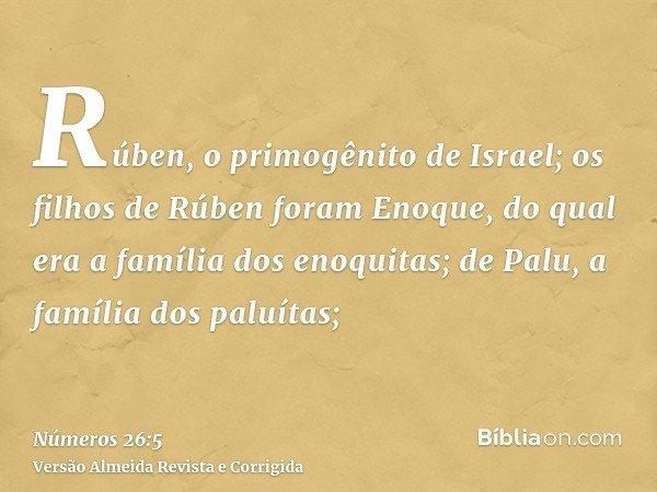 Rúben, o primogênito de Israel; os filhos de Rúben foram Enoque, do qual era a família dos enoquitas; de Palu, a família dos paluítas;