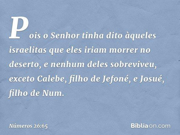 Pois o Senhor tinha dito àqueles israelitas que eles iriam morrer no deserto, e nenhum deles sobreviveu, exceto Calebe, filho de Jefoné, e Josué, filho de Num.